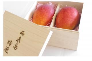 【O】桐箱入り特選マンゴー