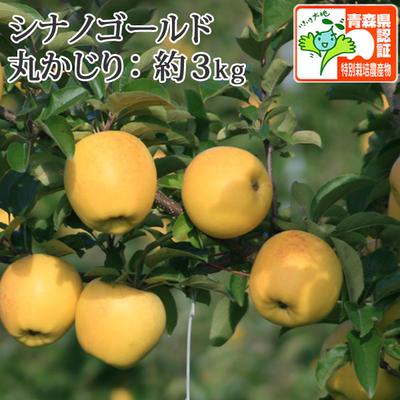 【送料無料】青森県産りんご シナノゴールド 丸かじり(小さめサイズ) 約3kg(11-13個入) 認証有