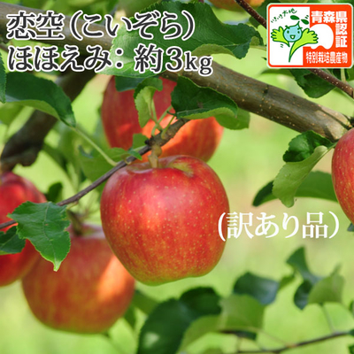 【送料無料】青森県産りんご 恋空 ほほえみ(訳あり・キズ有)  約3kg(8-11個入) 認証有