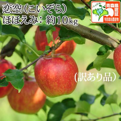 【送料無料】青森県産りんご 恋空 ほほえみ(訳あり・キズ有)  約10kg(28-40個入)認証有