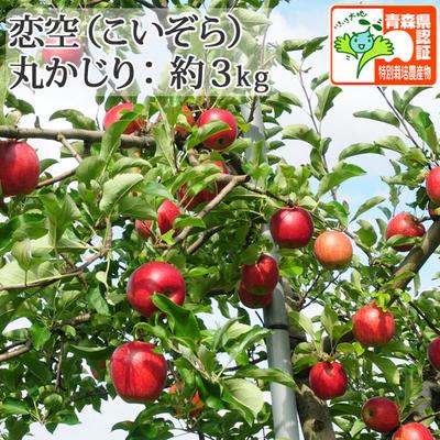【送料無料】青森県産りんご 恋空 丸かじり  約3kg(11-13個入) 青森県特別栽培農産物認証あり