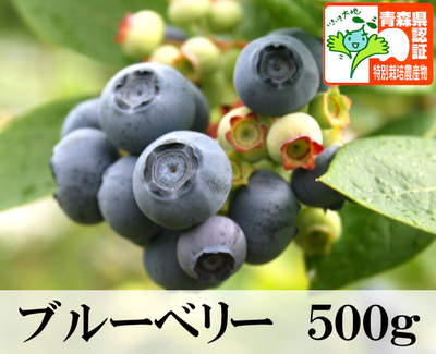 【送料無料・青森県産】ブルーベリー Mサイズ以上混在 500g 認証あり