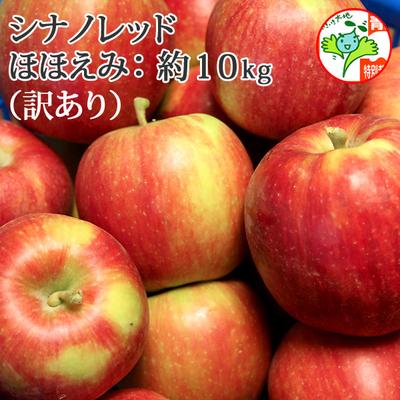 【送料無料】青森県産りんご シナノレッド ほほえみ(訳あり・キズ有)  約10kg(28-40個入) 認証有