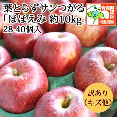 【送料無料】青森県産りんご 葉とらずサンつがる ほほえみ(訳あり・キズ有)  約10kg(28-40個入) 青森県特別栽培農産物認証あり