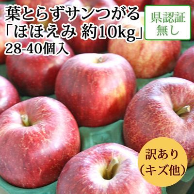 【送料無料】青森県産りんご 葉とらずサンつがる ほほえみ(訳あり・キズ有)  約10kg(28-40個入)認証なし