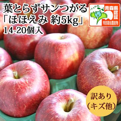 【送料無料】青森県産りんご 葉とらずサンつがる ほほえみ(訳あり・キズ有)  約5kg(14-20個入) 青森県特別栽培農産物認証あり