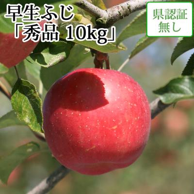 【送料無料】青森県産りんご 早生ふじ(ひろさきふじ・ほのか) 秀品  約10kg(28-40個入) 認証なし