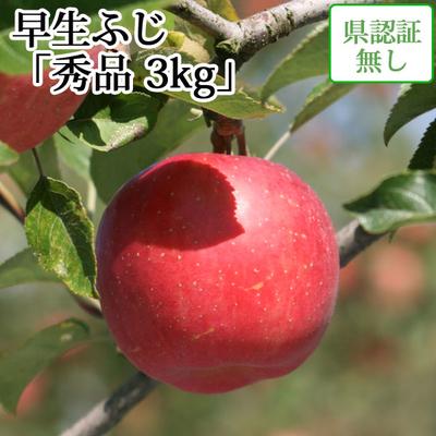 【送料無料】青森県産りんご 早生ふじ(ひろさきふじ・ほのか) 秀品  約3kg(8-11個入) 認証なし