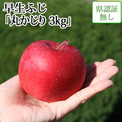 【送料無料】青森県産りんご 早生ふじ(ひろさきふじ・ほのか) 丸かじり  約3kg(11-13個入) 認証なし