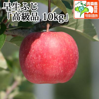 【送料無料】青森県産りんご 早生ふじ(ほのか) 高級品  約10kg(28-40個入) 青森県特別栽培農産物認証あり