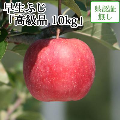 【送料無料】青森県産りんご 早生ふじ(ほのか) 高級品  約10kg(28-40個入) 認証なし
