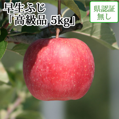 【送料無料】青森県産りんご 早生ふじ(ほのか) 高級品  約5kg(14-20個入) 認証なし