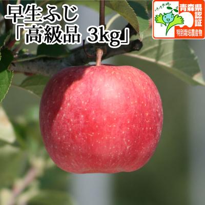【送料無料】青森県産りんご 早生ふじ(ほのか) 高級品  約3kg(8-11個入) 青森県特別栽培農産物認証あり