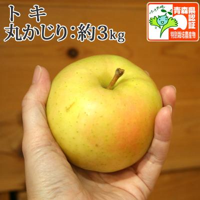 【送料無料】青森県産りんご トキ 丸かじり  約3kg(11-13個入) 青森県特別栽培農産物認証あり