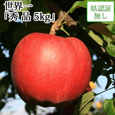 【送料無料】青森県産りんご 世界一 秀品  約5kg(8-10個入) 認証なし