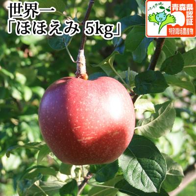 【送料無料】青森県産りんご 世界一 ほほえみ(訳あり)  約5kg(8-10個入) 青森県特別栽培農産物認証あり