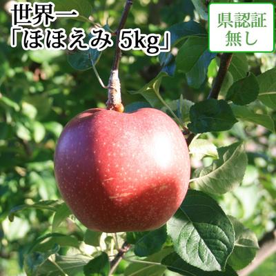 【送料無料】青森県産りんご 世界一 ほほえみ(訳あり)  約5kg(8-10個入) 認証なし