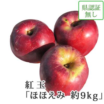 【送料無料】青森県産りんご 紅玉(こうぎょく) ほほえみ(訳あり)  約9kg(40-56個入) 認証なし