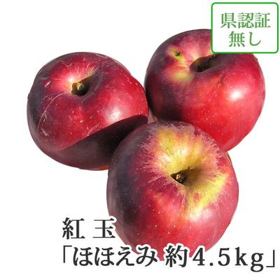 【送料無料】青森県産りんご 紅玉(こうぎょく) ほほえみ(訳あり)  約4.5kg(20-28個入) 認証なし