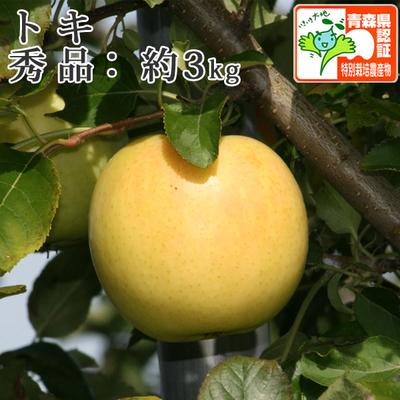 【送料無料】青森県産りんご トキ 秀品  約3kg(8-10個入) 青森県特別栽培農産物認証あり