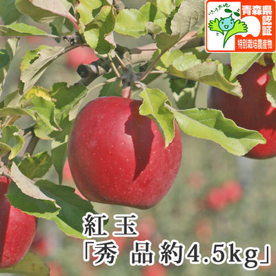 【送料無料】青森県産りんご 紅玉(こうぎょく)秀品  約4.5kg(20-23個入) 青森県特別栽培農産物認証あり