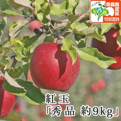 【送料無料】青森県産りんご 紅玉(こうぎょく)秀品  約9kg(40-46個入) 青森県特別栽培農産物認証あり