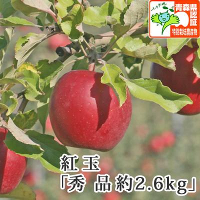 【送料無料】青森県産りんご 紅玉(こうぎょく)秀品  約2.6kg(8-11個入) 青森県特別栽培農産物認証あり
