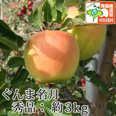 【送料無料】青森県産りんご ぐんま名月 秀品  約3kg(8-10個入) 青森県特別栽培農産物認証あり