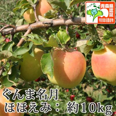 【送料無料】青森県産りんご ぐんま名月 ほほえみ(訳あり)  約10kg(28-40個入) 青森県特別栽培農産物認証あり