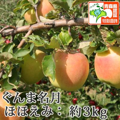 【送料無料】青森県産りんご ぐんま名月 ほほえみ(訳あり)  約3kg(8-10個入) 青森県特別栽培農産物認証あり