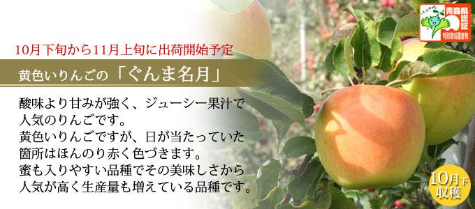 甘さとジューシー果汁が特徴「ぐんま名月」