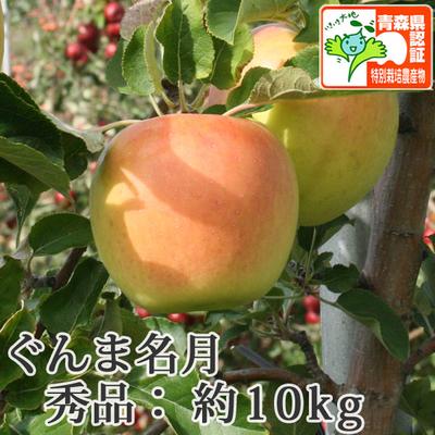 【送料無料】青森県産りんご ぐんま名月 秀品  約10kg(28-40個入) 青森県特別栽培農産物認証あり