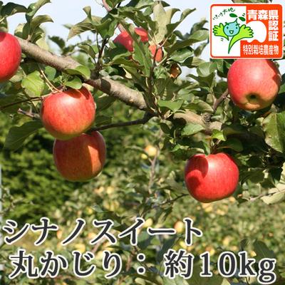 【送料無料】青森県産りんご シナノスイート 丸かじり(小さめサイズ)  約10kg(40-56個入) 青森県特別栽培農産物認証あり