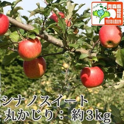 【送料無料】青森県産りんご シナノスイート 丸かじり(小さめサイズ)  約3kg(11-13個入) 青森県特別栽培農産物認証あり