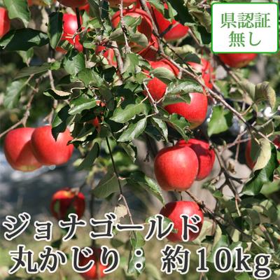 【送料無料】青森県産りんご ジョナゴールド 丸かじり(小さめサイズ)  約10kg(40-56個入) 認証なし