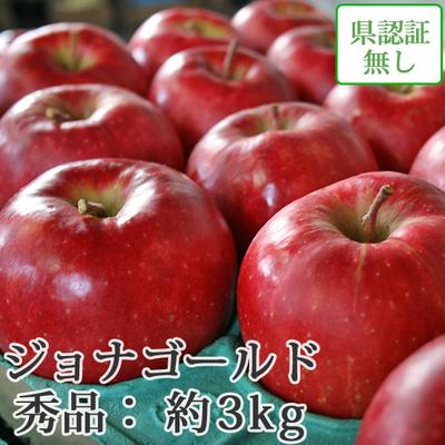 【送料無料】青森県産りんご ジョナゴールド 秀品  約3kg(8-10個入) 認証なし