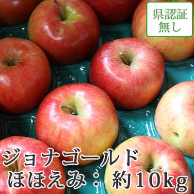 【送料無料】青森県産りんご ジョナゴールド ほほえみ(訳あり)  約10kg(28-40個入)認証なし