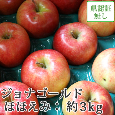 【送料無料】青森県産りんご ジョナゴールド ほほえみ(訳あり)  約3kg(8-10個入)認証なし