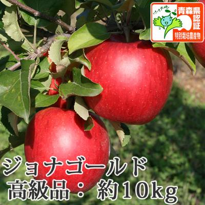 【送料無料】青森県産りんご ジョナゴールド 高級品  約10kg(28-40個入) 青森県特別栽培農産物認証あり