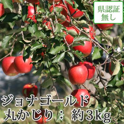 【送料無料】青森県産りんご ジョナゴールド 丸かじり(小さめサイズ)  約3kg(11-13個入) 認証なし