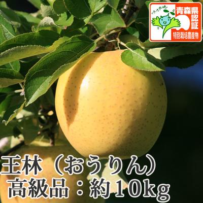 【送料無料】青森県産りんご 王林 高級品  約10kg(28-40個入) 青森県特別栽培農産物認証あり