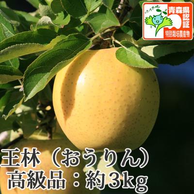 【送料無料】青森県産りんご 王林 高級品  約3kg(8-10個入) 青森県特別栽培農産物認証あり