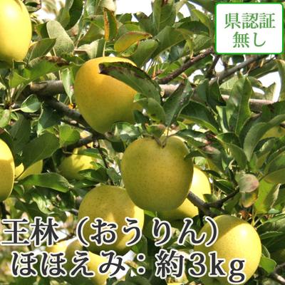 【送料無料】青森県産りんご 王林 ほほえみ(訳あり)  約3kg(8-10個入)認証なし