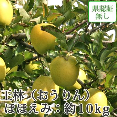 【送料無料】青森県産りんご 王林 ほほえみ(訳あり)  約10kg(28-40個入)認証なし