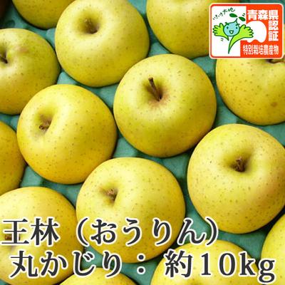 【送料無料】青森県産りんご 王林 丸かじり(小さめサイズ)  約10kg(40-56個入) 青森県特別栽培農産物認証あり