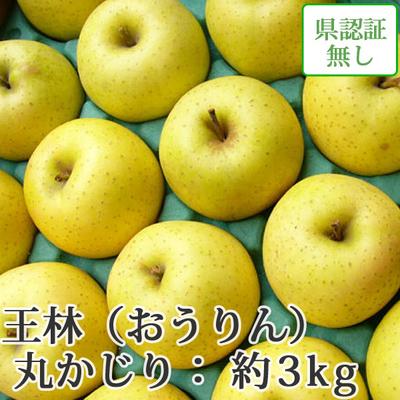 【送料無料】青森県産りんご 王林 丸かじり(小さめサイズ)  約3kg(11-13個入) 認証なし