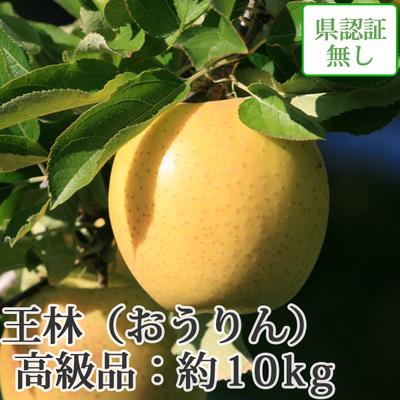【送料無料】青森県産りんご 王林 高級品  約10kg(28-40個入)認証なし