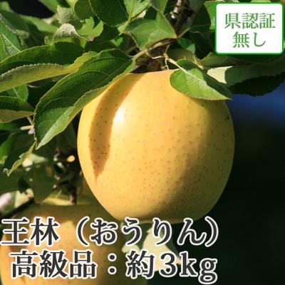 【送料無料】青森県産りんご 王林 高級品  約3kg(8-10個入)認証なし