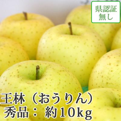 【送料無料】青森県産りんご 王林 秀品  約10kg(28-40個入)認証なし