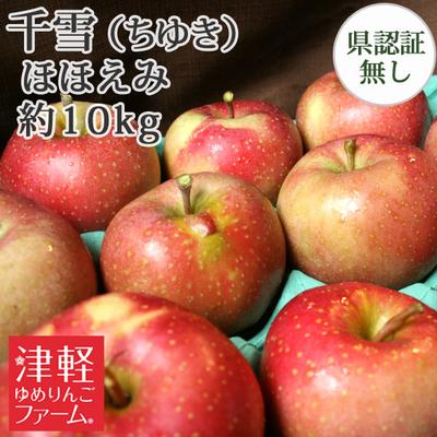 【送料無料】青森県産りんご 千雪 ほほえみ(訳あり)  約10kg(28-40個入)認証なし